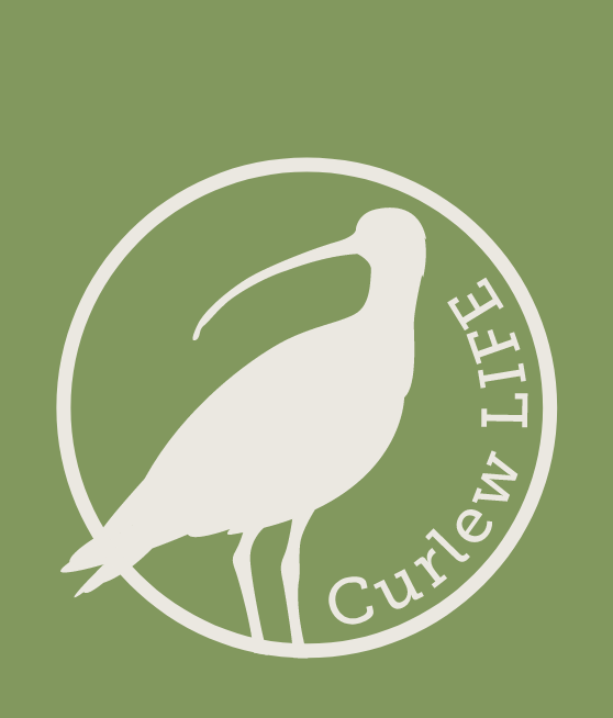 Curlew LIFE logo